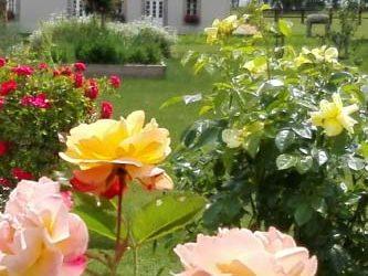 3e Marché aux plantes «Baptême de la Rose»