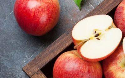 Soirée autour de la pomme